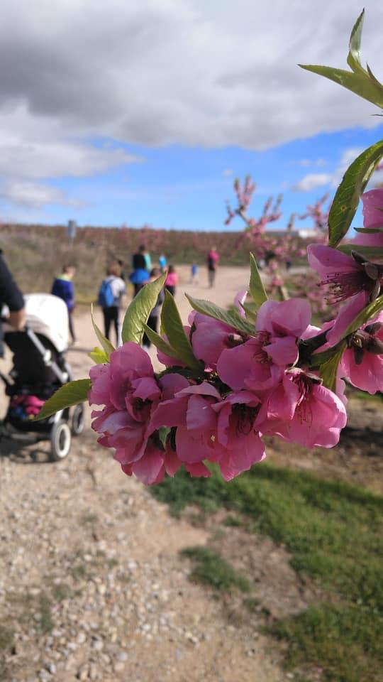 Un març florit per a fomentar la convivència*
