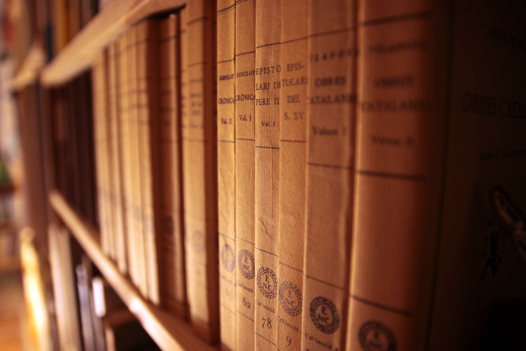 La biblioteca d'Alcanyís rep una donació de 8.200 volums*